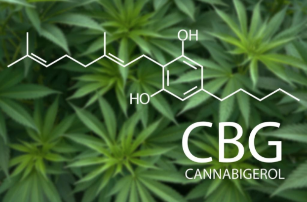 What is CBG: Benefits, Side Effects & How to Choose the Right CBG Product?